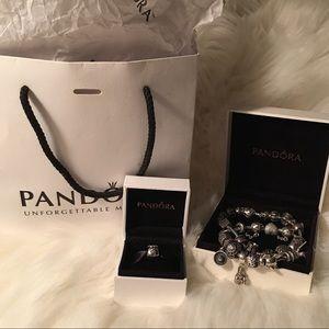 Money Bags Pandora Charm
